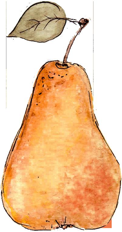 eau-de-vie-poire-williams-rouge